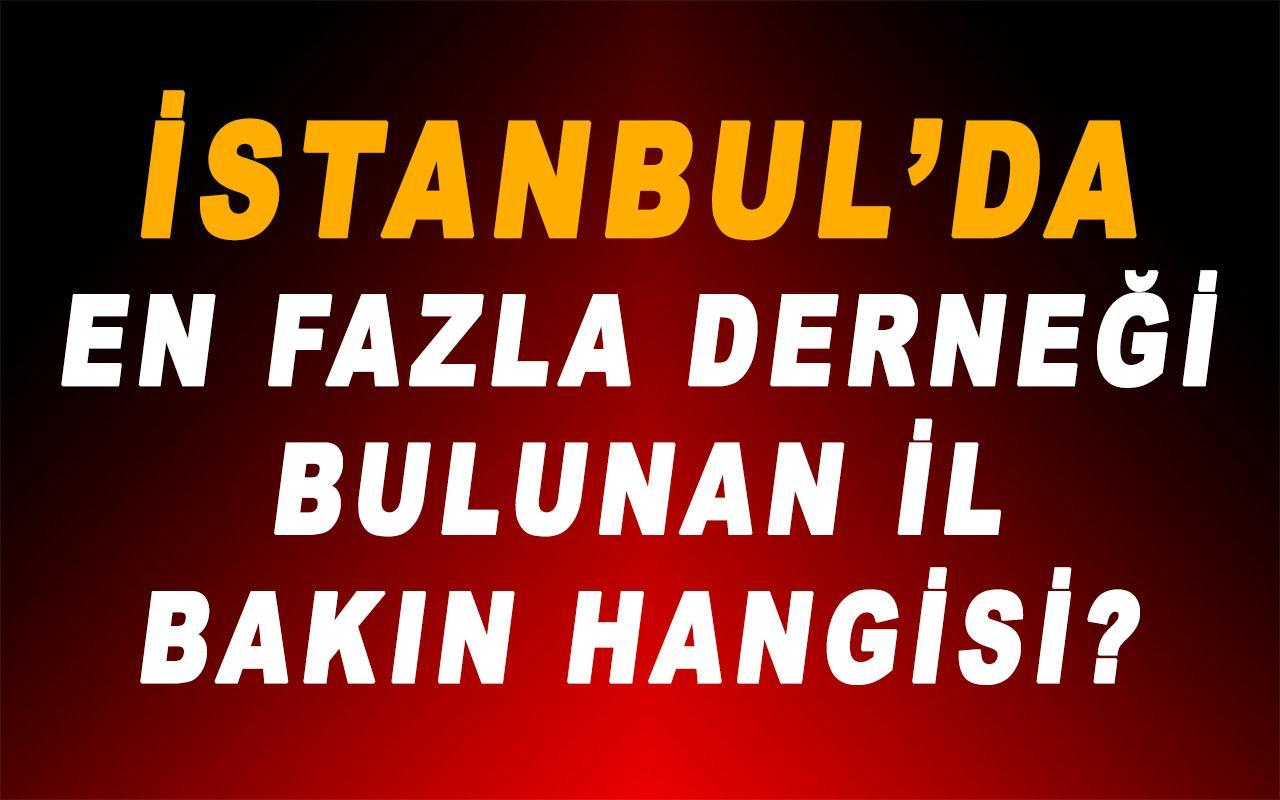 İstanbul'da En Fazla Derneği Bulunan İl Bakın Hangisi!